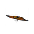 昆虫 蝶 3D